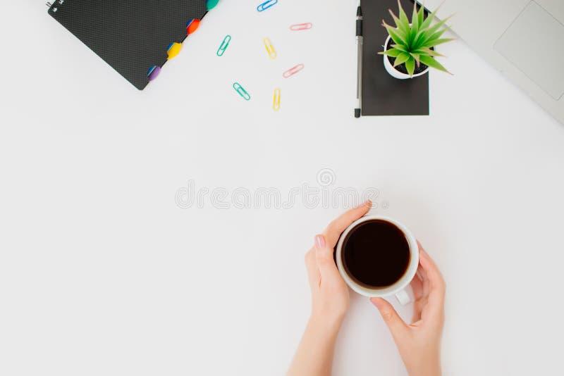 Flatlay med kvinnliga händer och kaffe på vit bakgrund arkivbilder