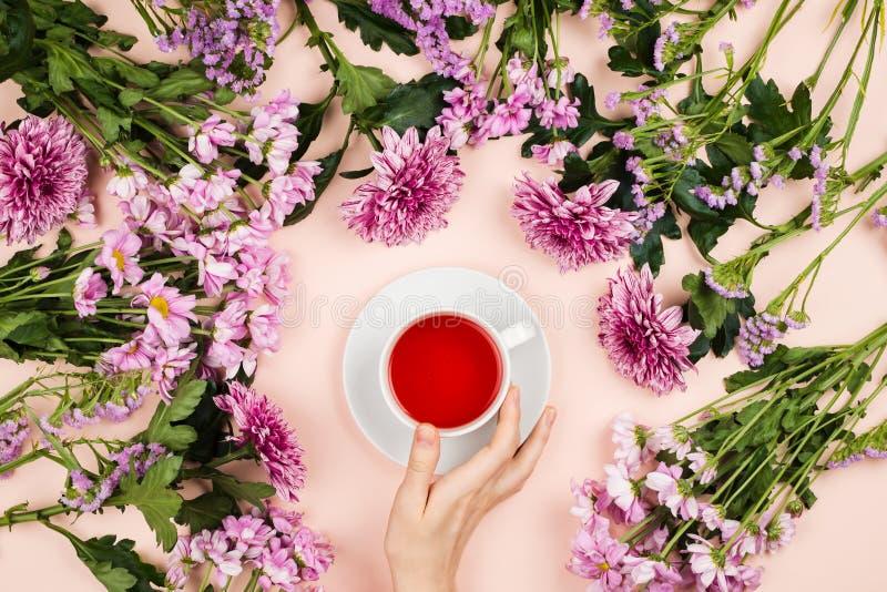 Flatlay met mooie chrysant bloeien en de vrouwen` s hand houdend een kop van hibiscusthee stock foto