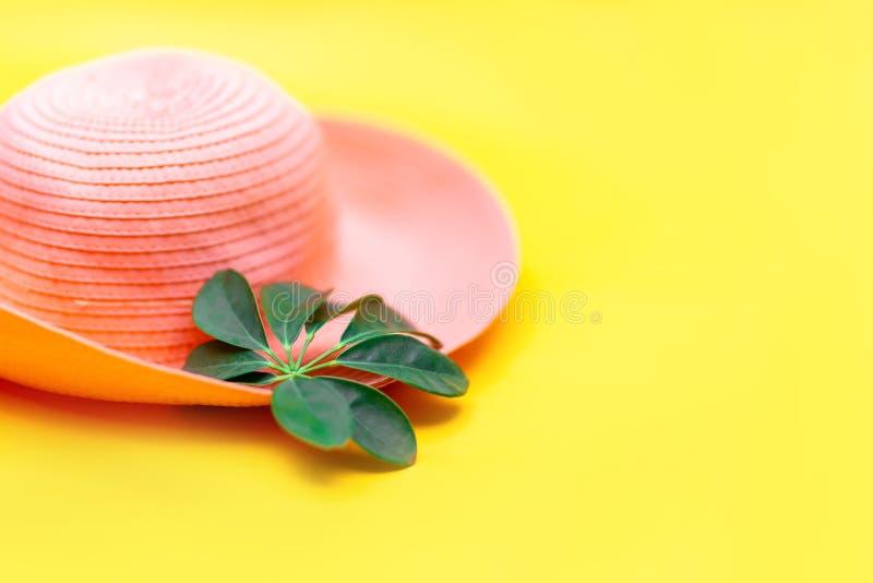 Flatlay tropicale della foglia verde e del cappello sul fondo giallo di colore, vista superiore immagini stock libere da diritti