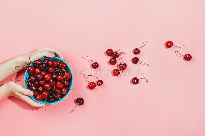 Flatlay of woman`s hands holding blue bowl full of fresh organic cherries stock image