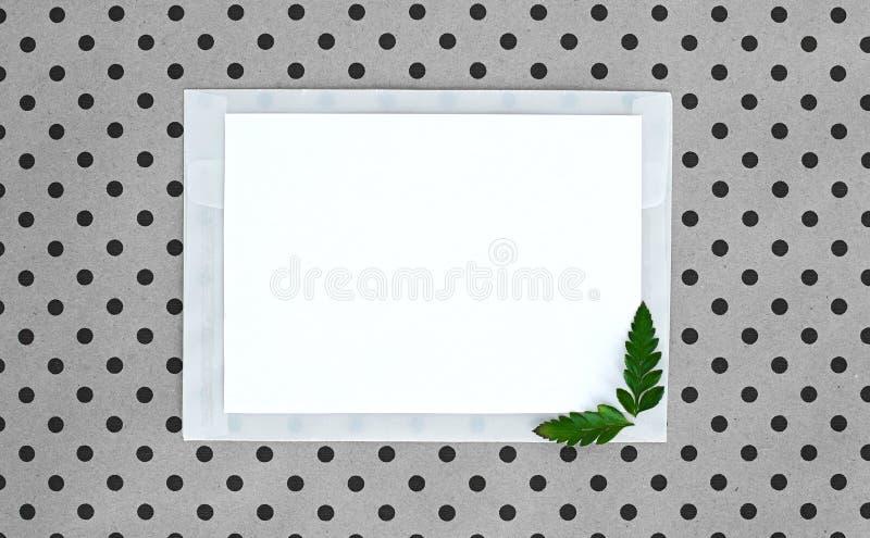Flatley op turkooise achtergrond met Witboekblad voor tekst en varenbladeren, hoogste mening, ruimte voor tekst, exemplaarruimte, stock foto
