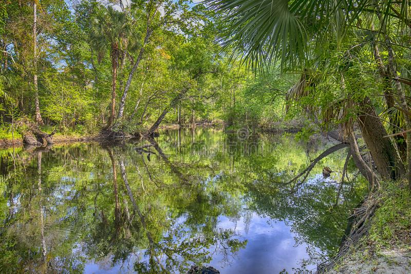 Flatwoods Park In Tampa stock image
