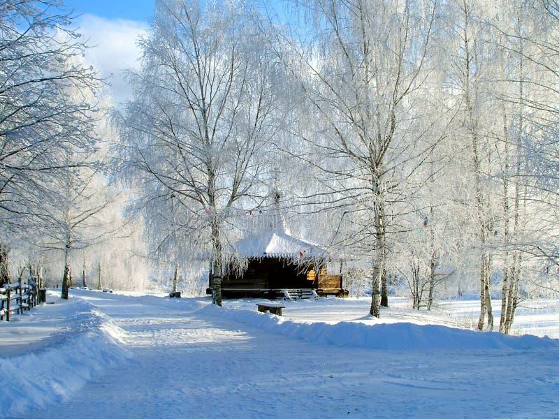 Flaumiger Winter. lizenzfreies stockbild