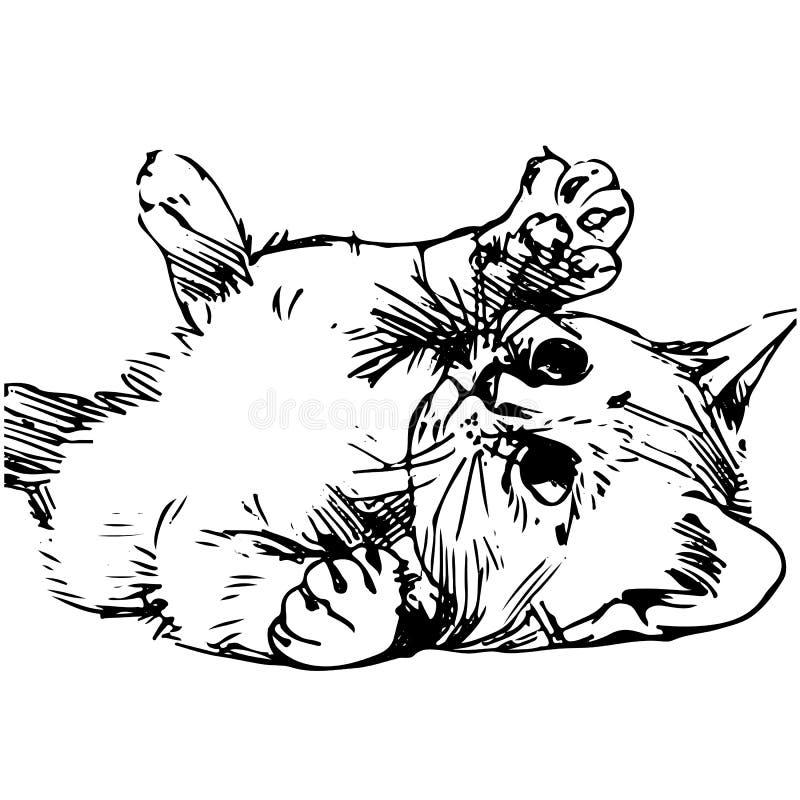 Flaumiges Kätzchen spielt, Schattenbildzeichnung auf weißem Hintergrund lizenzfreie abbildung