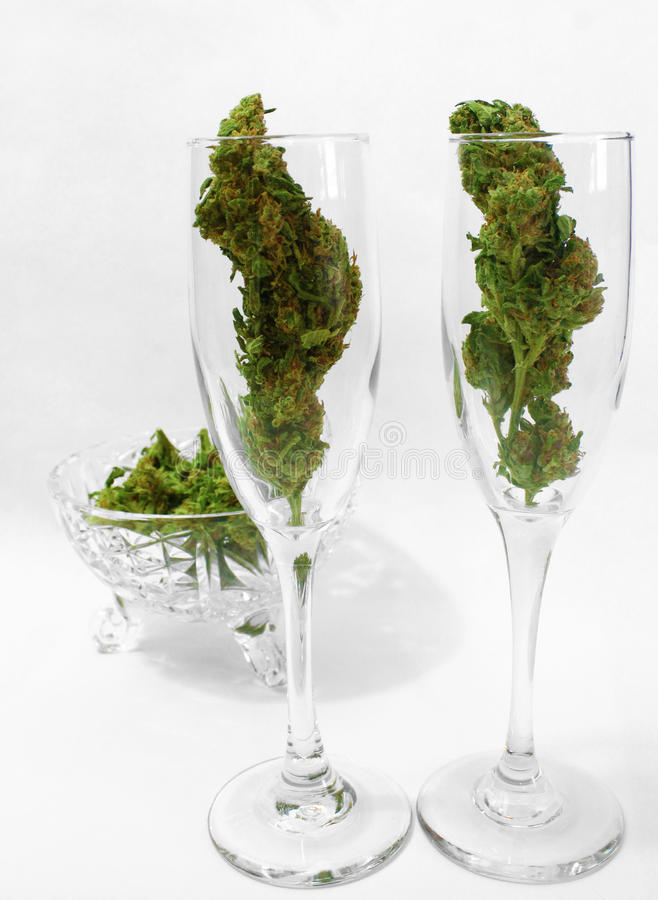 Flautas de champán llenadas de los brotes de la marijuana fotografía de archivo libre de regalías