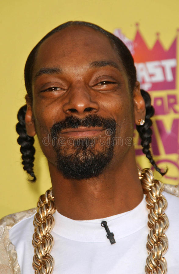 Flav del sabor, Snoop Dogg imágenes de archivo libres de regalías