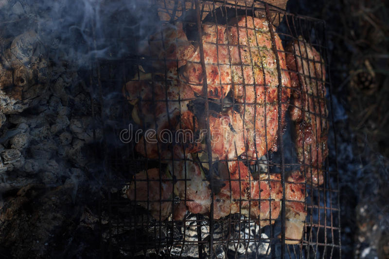Download Flavorful Meat On The Grill With Smoke In Forest Stock Image - Image of roasted, picnic: 95762409