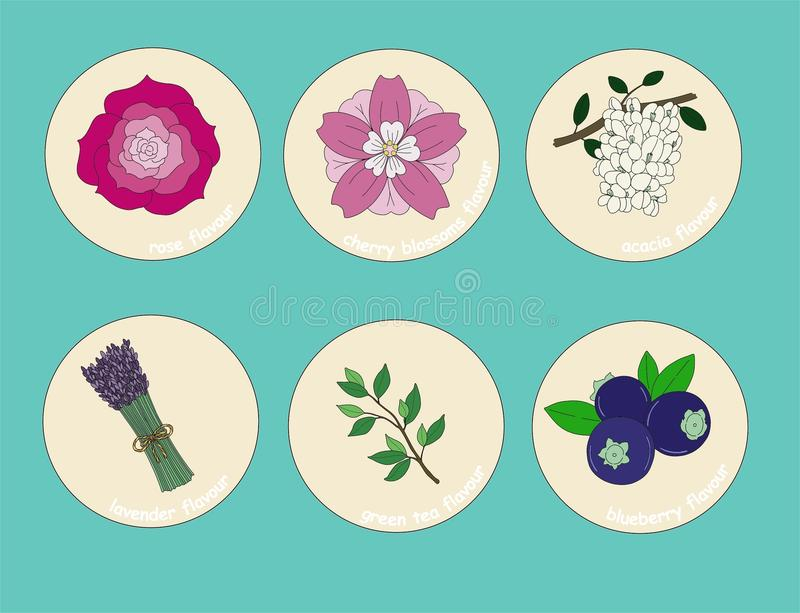 Flavours stickers for drinks and desserts. Fruits flavours stickers for drinks and desserts: rose, cherry blossoms, acacia, lavender, green tea, blueberry. The royalty free illustration