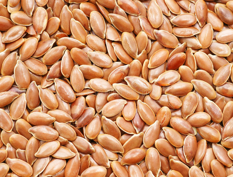 Download Flax seeds stock photo. Image of natural, flax, additive - 19828650
