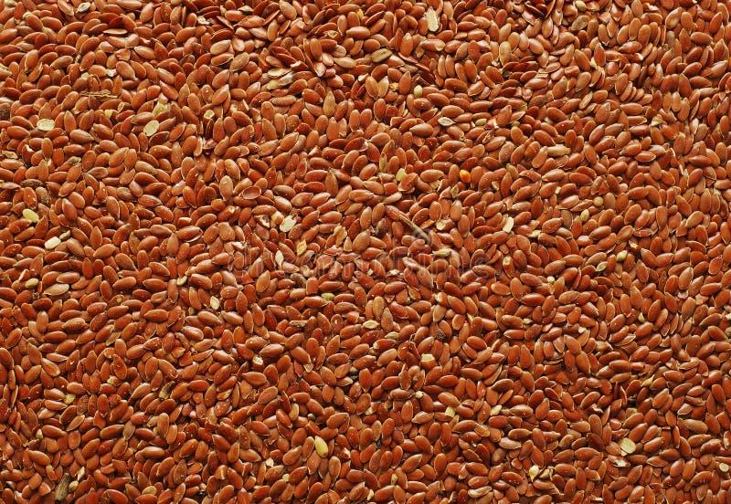 Flax Seeds Stock Photo