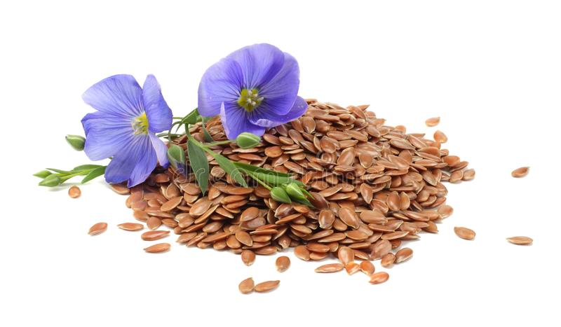 Flax seeds with flower isolated on white background. flaxseed or linseed. Cereals. royalty free stock photos