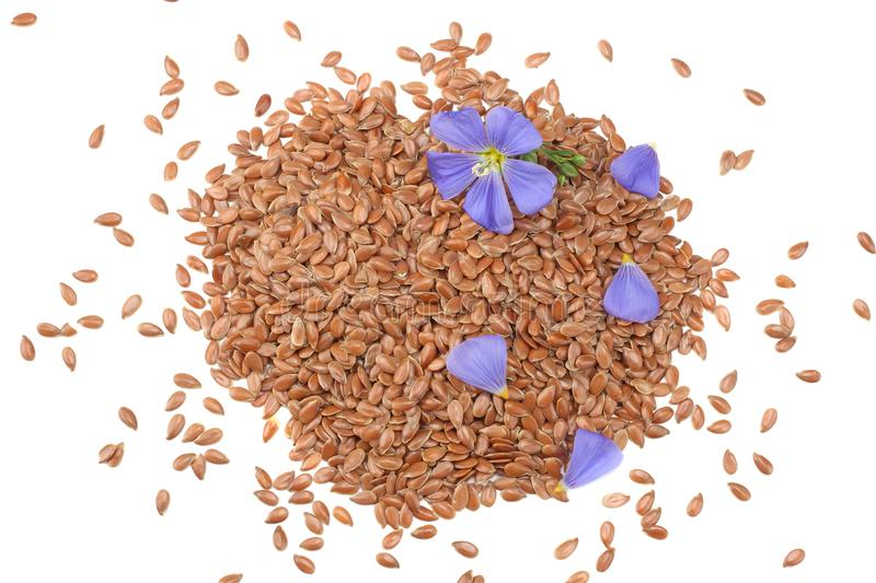 Flax seeds with flower isolated on white background. flaxseed or linseed. Cereals. top view royalty free stock photography