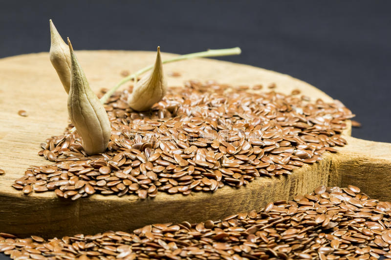 Flax seeds texture with wood and dried radish pods. Flax seeds texture with wooden piece and dried radish pods royalty free stock photo