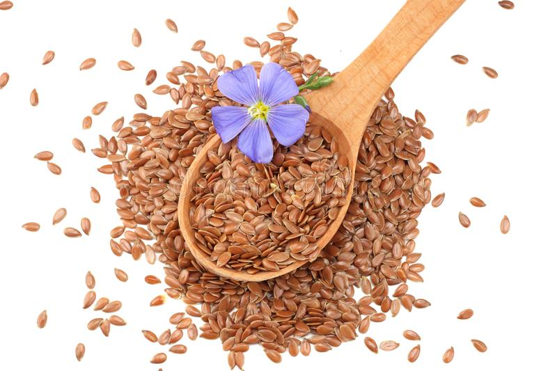 Flax seeds in wooden spoon with flower isolated on white background. flaxseed or linseed. Cereals stock image