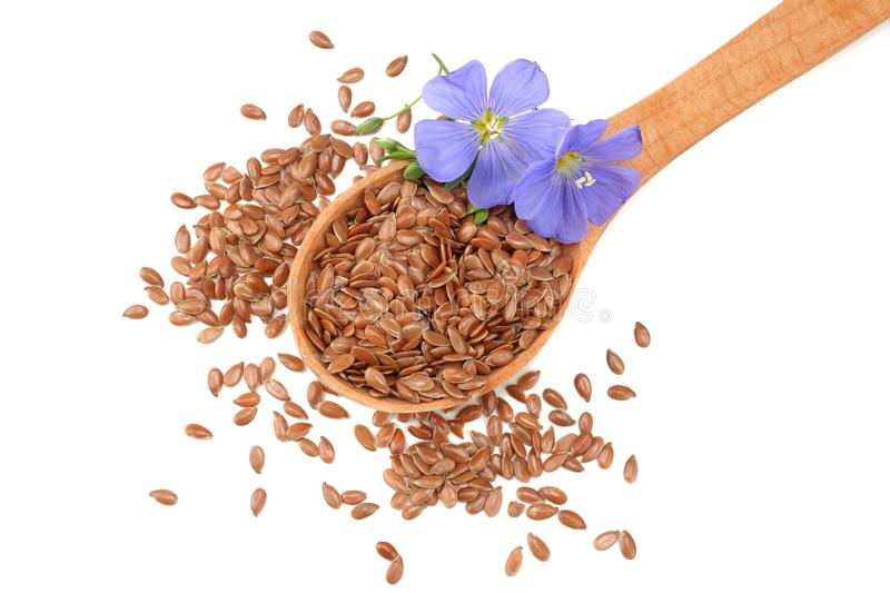 Flax seeds in wooden spoon with flower isolated on white background. flaxseed or linseed. Cereals. top view royalty free stock image