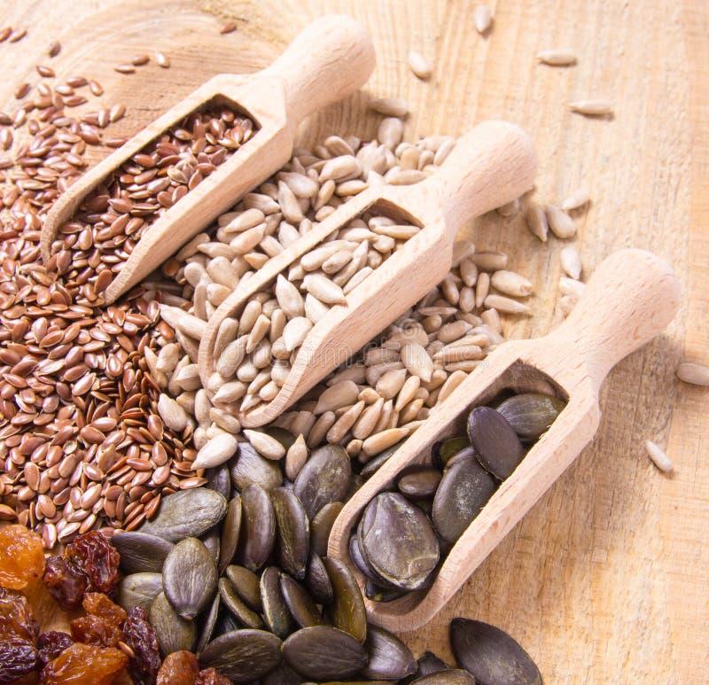 Flaxseed, κολοκύθα, σταφίδες, φακές και σπόροι ηλίανθων στα ξύλινα κουτάλια στοκ φωτογραφίες