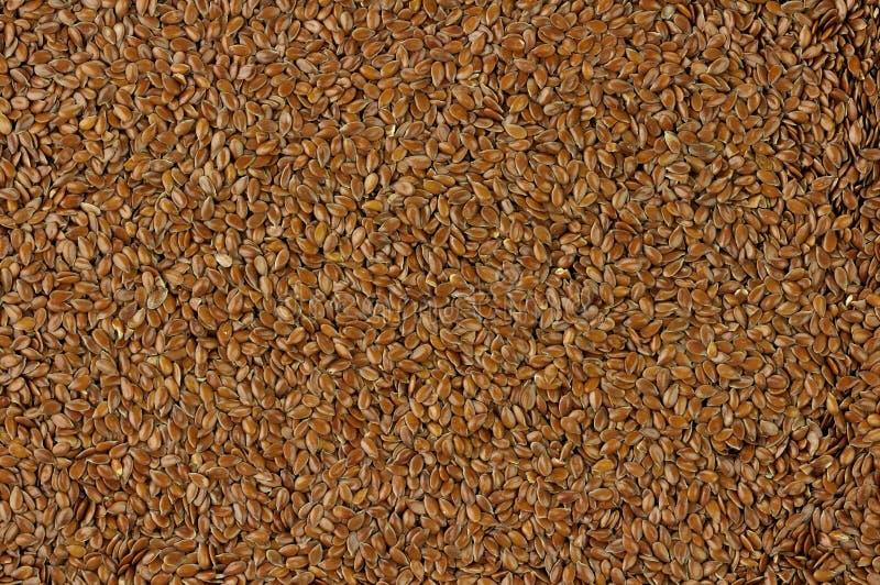 flaxseed предпосылки стоковое изображение