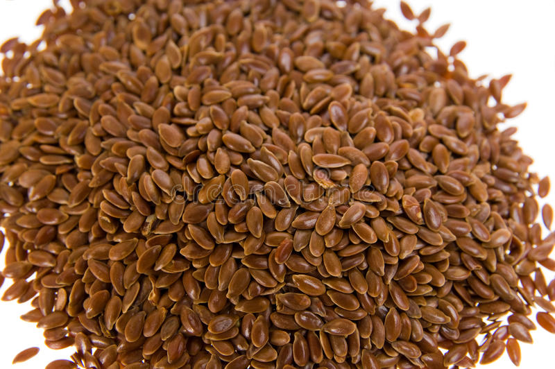 flaxseed royaltyfria bilder