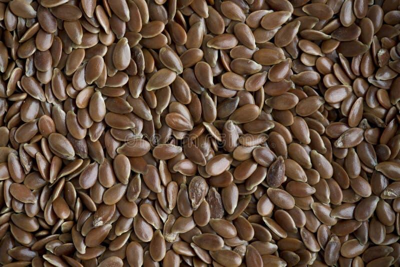 Flaxseed obrazy stock
