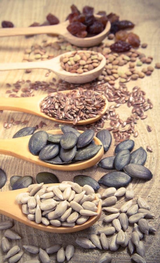 Flaxseed, bania, rodzynki, soczewicy i słonecznikowi ziarna w drewnianych łyżkach, fotografia stock
