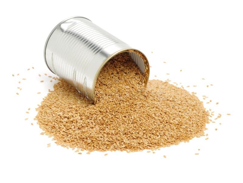Flaxseed na bia?ym tle zamkni?tym w g?r? zdjęcie stock
