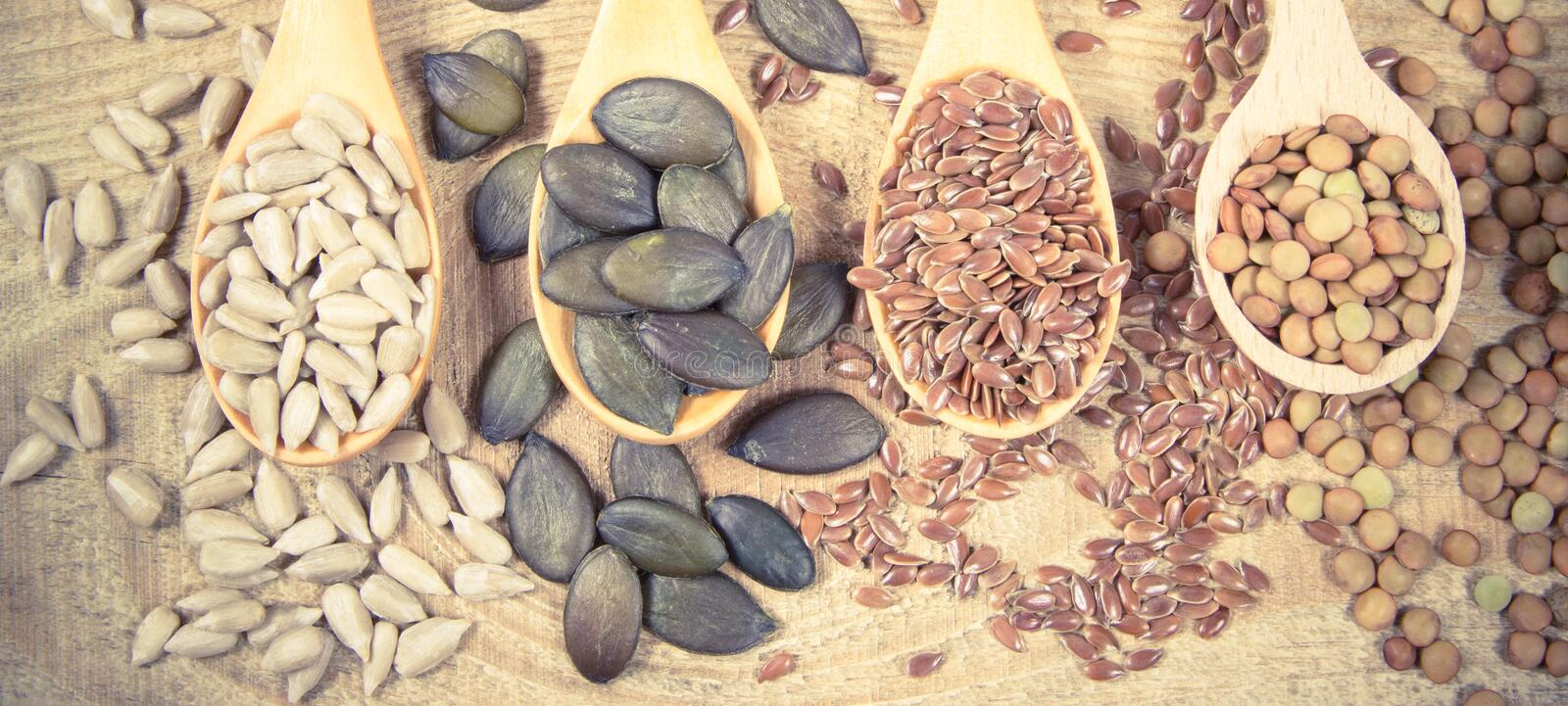 Flaxseed, pumpkin, raisins, lentils and sunflower seeds in wooden spoons. Seeds - a concept of healthy food additives royalty free stock photography