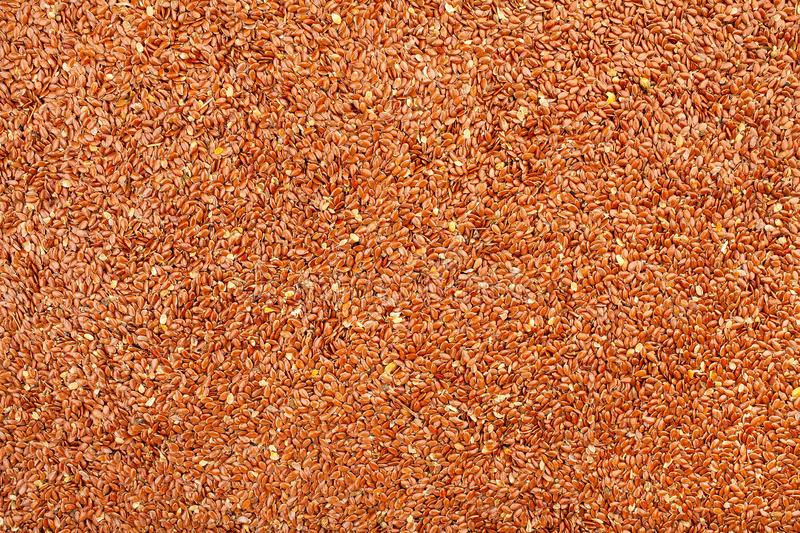 flaxseed obrazy royalty free