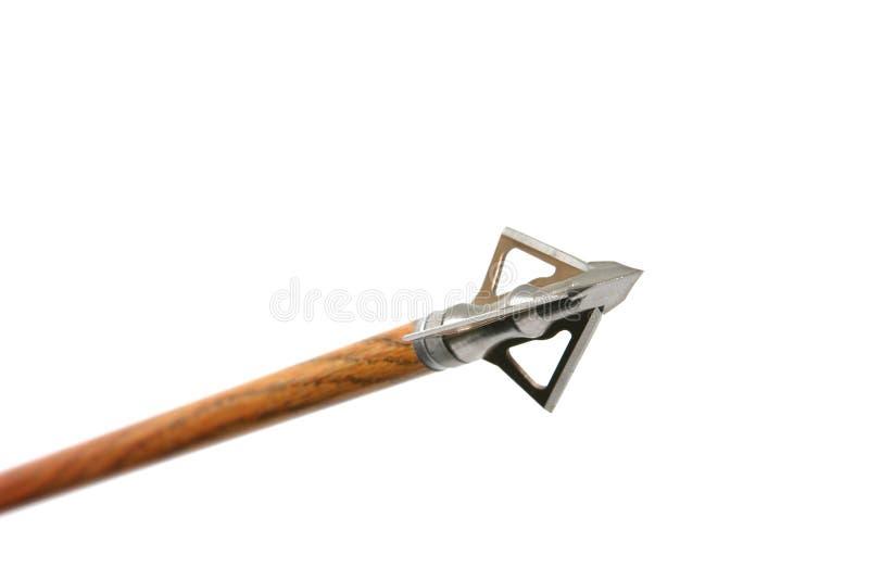 Download Flecha de Broadhead imagen de archivo. Imagen de matanza - 1293531