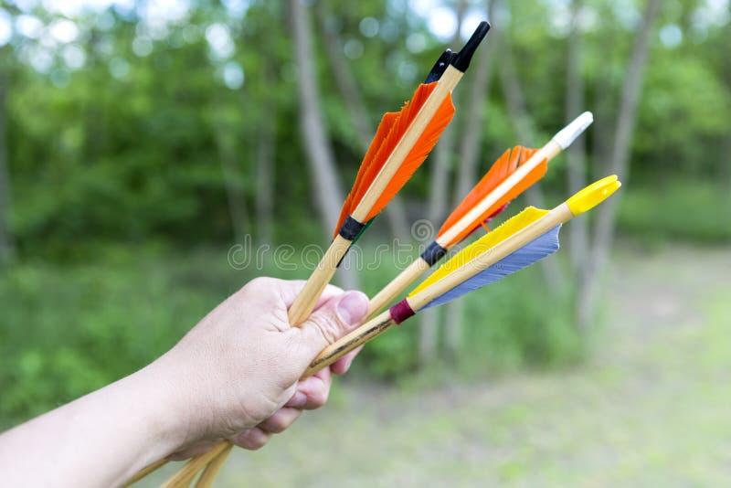 Flechas tradicionales a disposición imagenes de archivo