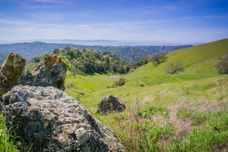 Flechte bedeckte Flusssteine neben einer Spur in Henry W Coe-Nationalpark, Kalifornien lizenzfreie stockfotos