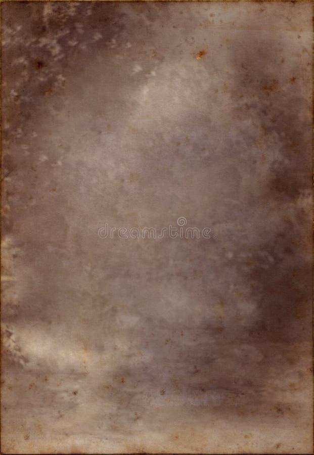 flecked пергамент стоковые фото