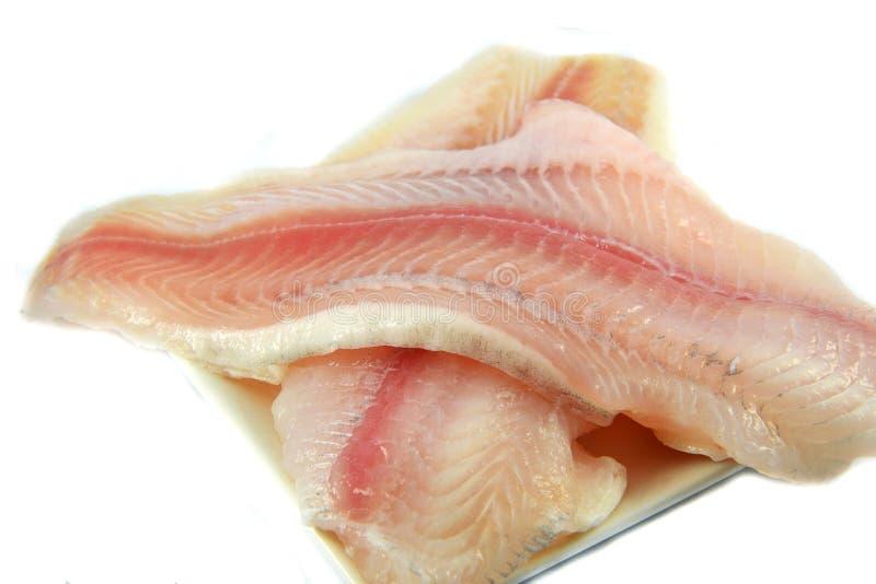 Fleisch der rohen Fische frisch lizenzfreie stockfotos