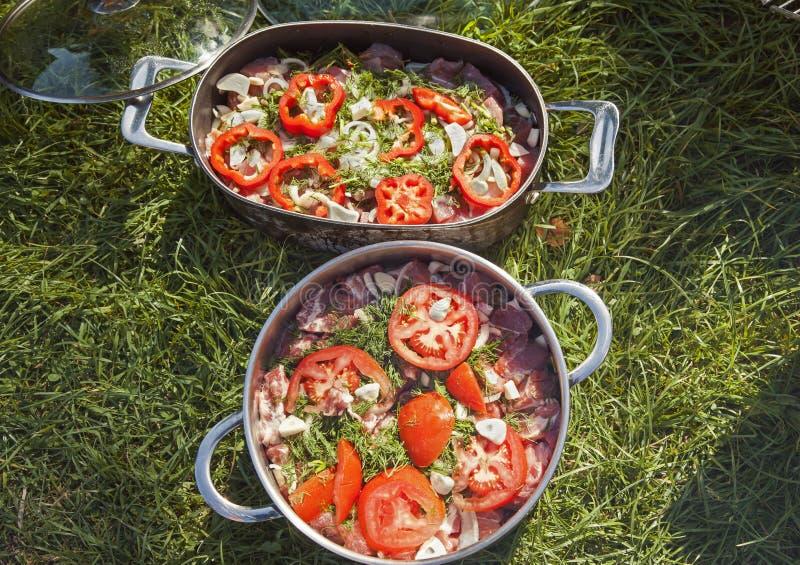 Fleisch für BBQ in den Wannen auf Gras lizenzfreie stockfotos