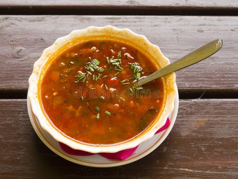 Fleisch Solyanka, russische traditionelle Suppe mit heißen Gewürzen in einer Schüssel mit Löffel auf Holztisch lizenzfreies stockfoto