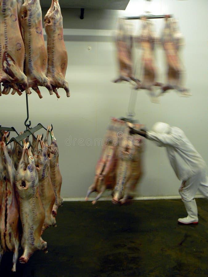 Fleisch unterwegs lizenzfreie stockfotos