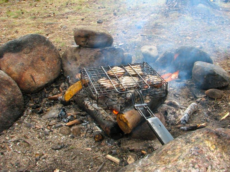 Fleischgrill im Grill wird auf dem Feuer in einem Wald herein gebraten stockfotos