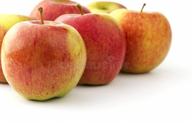 Flera mogna braeburnäpplen arkivfoton