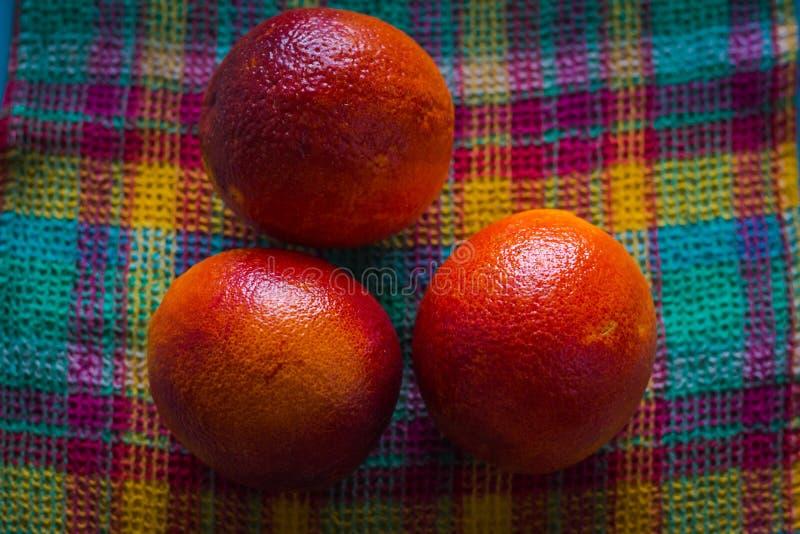 Flera nya röda apelsiner har precis valts från ett träd och har travts på ett rutigt tyg av olika ljusa färger royaltyfria foton