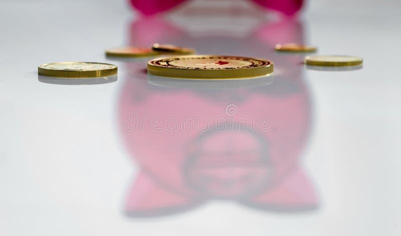 Flera olika guld- mynt på bakgrunden av reflexionen av en röd spargris royaltyfria foton