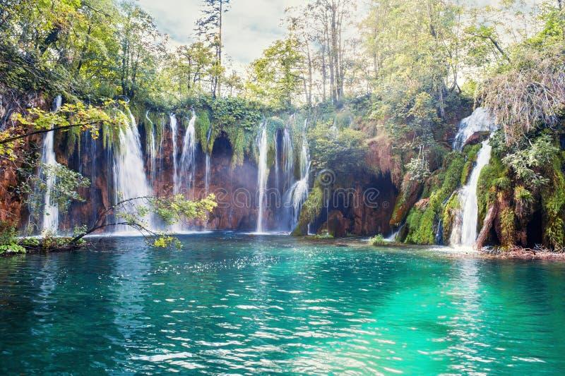 Flera vattenfall av en av de mest häpnadsväckande Plitvice sjöarna, Kroatien Ett riktigt jungfruligt och underbart stycke av natu royaltyfria bilder
