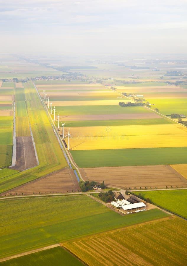 Flera windmills och lantgård på den holländska ligganden arkivbild