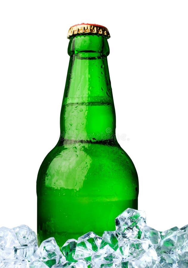 Fles bier met ijs royalty-vrije stock foto