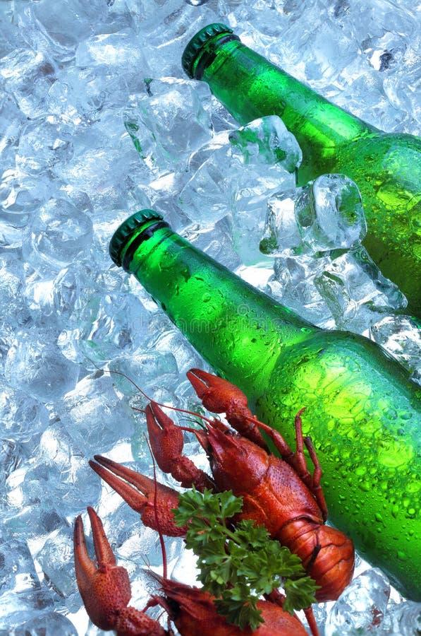 Fles bier met rivierkreeften in ijsblokjes close-up Groene Fles Hete de Zomer verse drank De ruimte van het exemplaar stock foto