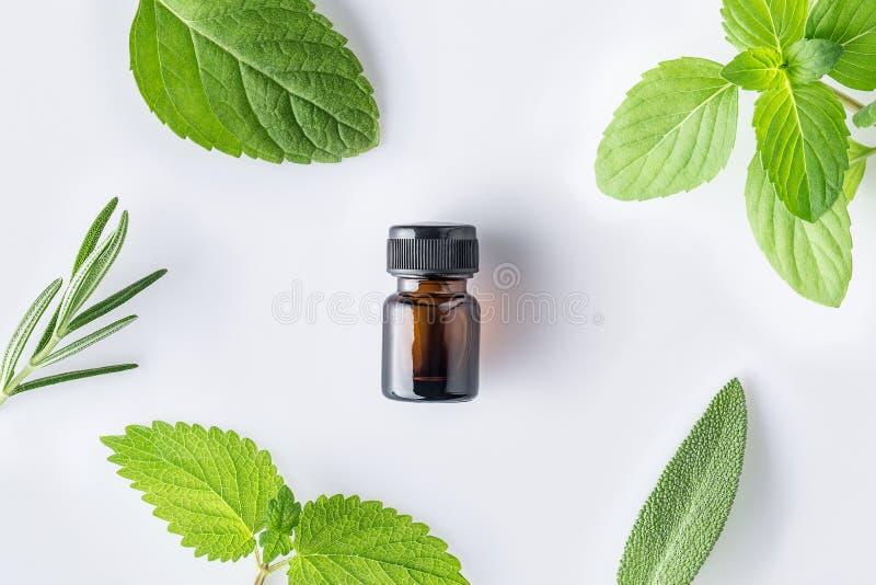 Fles etherische olie met verse kruidensalie, rozemarijn, citroen stock afbeeldingen