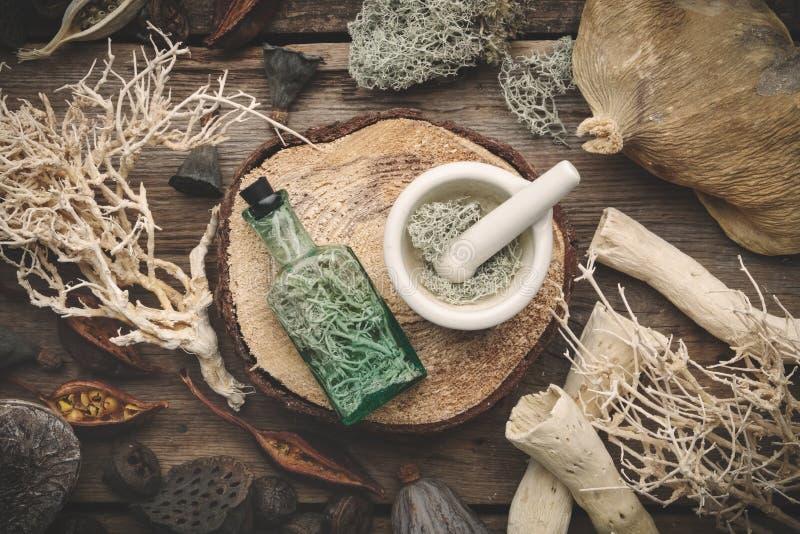 Fles infusie en mortier, nootshell, droge installaties, eucalyptus en lotusbloemzaden stock foto