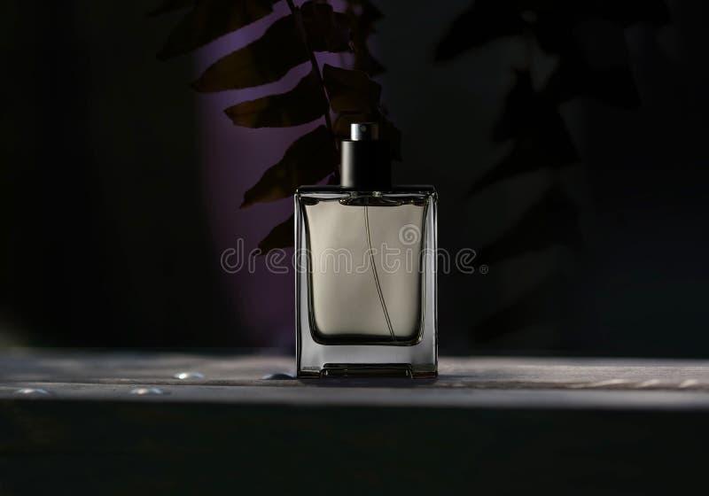 Fles mensen` s parfum stock afbeelding