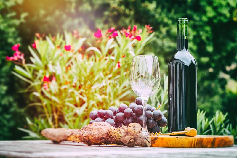 Fles rode wijn met druif Wijn het proeven en gastronomieconce stock foto's
