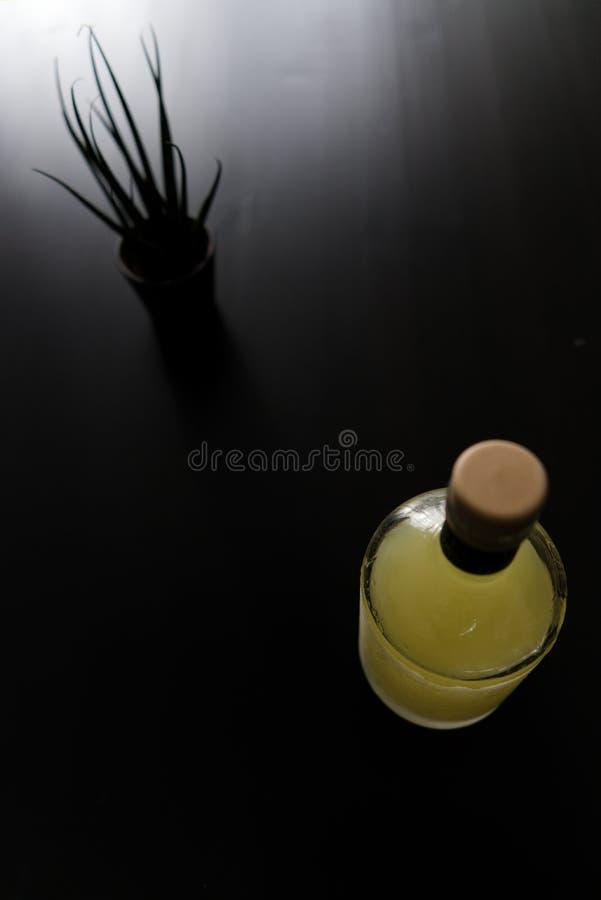 Fles van limoncello en kleine installatie royalty-vrije stock foto