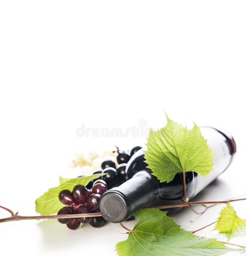 Fles van luxe rode die wijn en wijnstok over witte bac wordt geïsoleerd royalty-vrije stock afbeeldingen