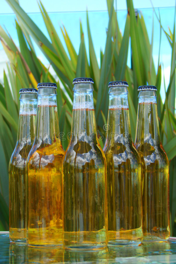 Flessen bier royalty-vrije stock foto